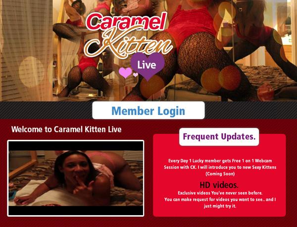 Caramel Kitten Live Website