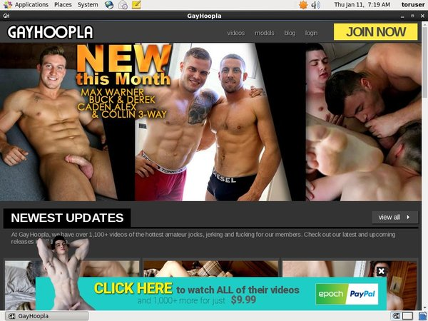 New Gayhoopla Accounts